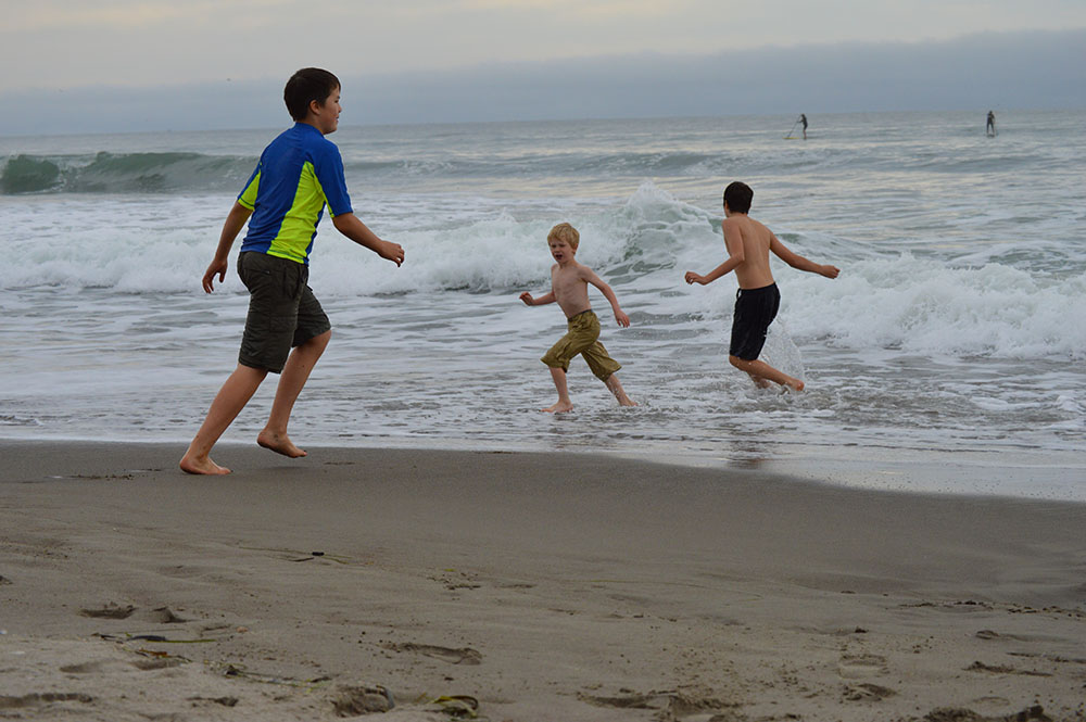 Ocean Fun : Northern California Coast