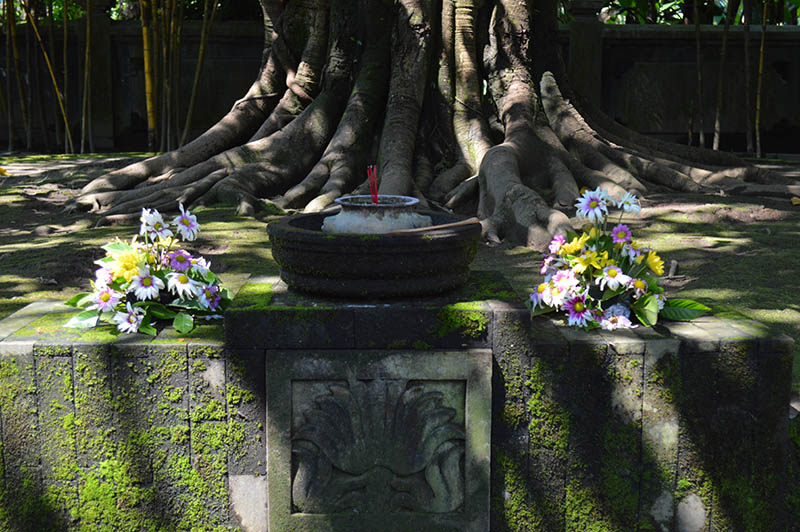 The Last Stop Before Home: Yogyakarta, Indonesia